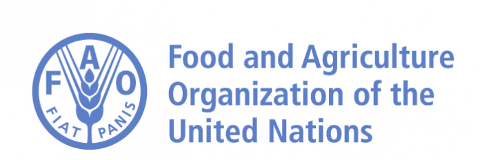 International Youth Day: New Investment Guidelines Aim to Elevate Young People in Agri-food Systems
