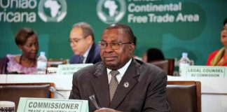 Ambassador Albert Muchanga the African Union Commissioner for Trade and Industry