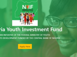 the N75Billion Nigeria Youth Investment Fund
