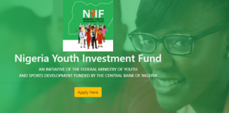 239 Youth-owned Businesses receive N165,700,000.00 Million Naira from NYIF