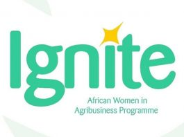 Ignite 202 Funding Opportunity for African Women in Agribusiness