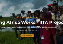 2020 Young Africa Works-IITA project (Entrepreneurship & Employment Tracks)