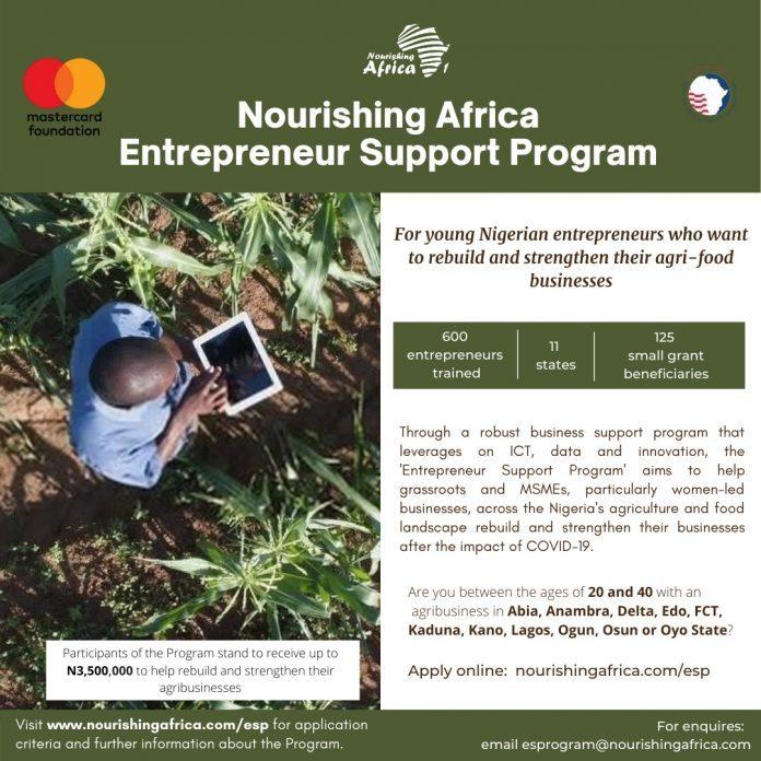 Nourishing Africa Entrepreneur Support Program for Nigerians