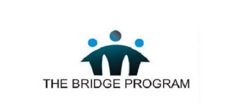 2021 Bridge Fellowship Program