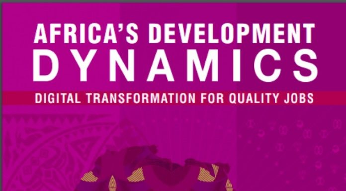 Digitalisation of Economic Sectors Will Kick-start New Growth Cycle after COVID-19 -Africa's Development Dynamics Report