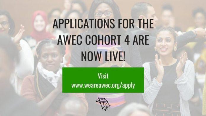 African Women Entrepreneurship Cooperative (AWEC) Cohort 4