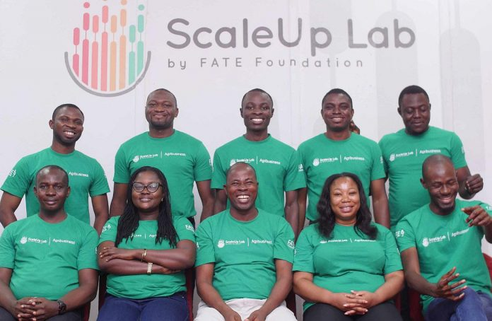 FATE Foundation Opens Application for ScaleUp Lab Agribusiness Accelerator Programme
