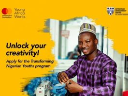 Transforming Nigerian Youths Program for MSMEs