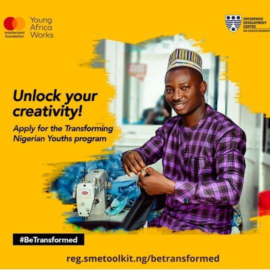 Transforming Nigerian Youths Program for MSMEs