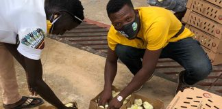 Banker-turned-poultry farmer becomes champion for African agriculture