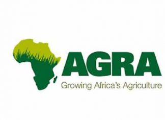 Innovation Grant for Catalyzing Women-Women supply chains (Up to $9,000 for each qualifying Agribusiness)