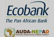 Over 200 graduates emerge from the Ecobank Group and AUDA-NEPAD MSME Training for Financing program