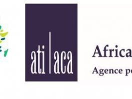 Unlocking Investments into Africa's Renewable Energy Market