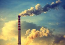 Decarbonizing African Businesses